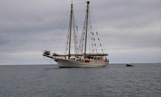 Schooner Tiama Sailing Adventures In Long Beach