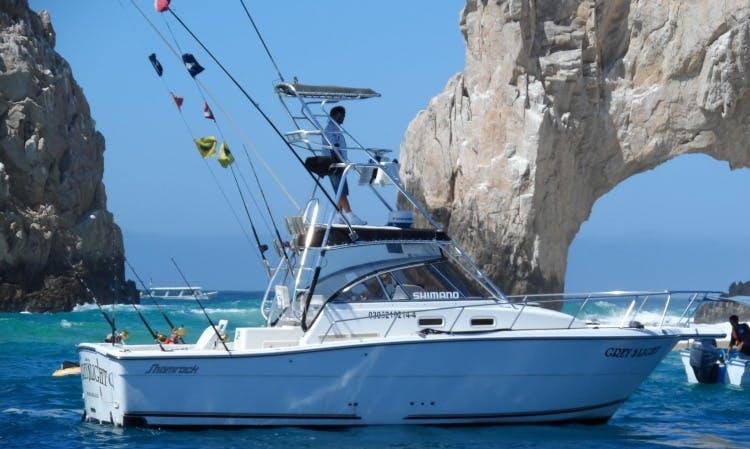 "30ft ""Los Amigos"" Sports Fisherman in Cabo San Lucas, Mexico"