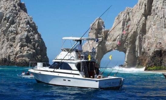 35ft Bertram Sport Fisherman In Cabo San Lucas, Mexico