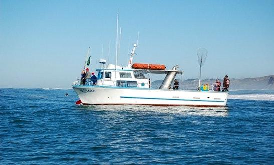 Riptide Fishing Charters In Half Moon Bay
