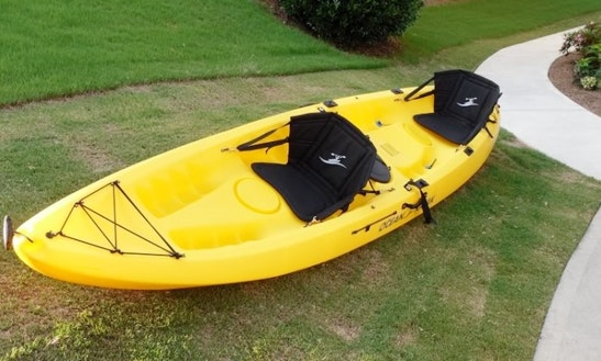 Double Kayak For Hire In Boreen Point Australia