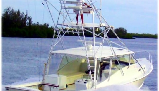 40' Sport Fisherman Charter In Fort Pierce, Florida