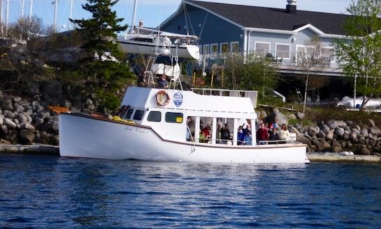 50' Headboat Charter In Nova Scotia, Canada