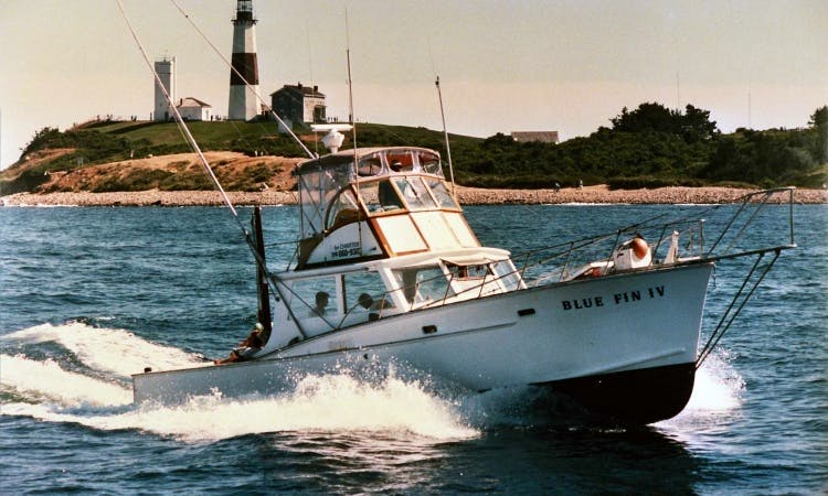 "Charter on 41ft ""Blue Fin IV"" Sportfisherman Boat in Montauk, New York"