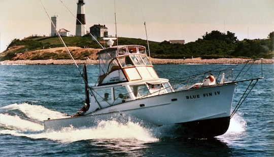 Charter On 41ft