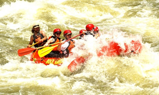 Wet & Wild Paddle Boat Rentals On Colorado River