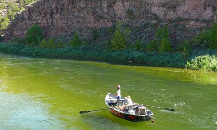 Rüyada Büyük Yeşil Akan Nehir Dere Görmek