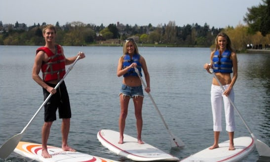 Stand Up Paddle Board Big Easy Rental In Baja California Sur