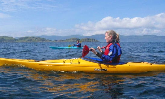 Single And Double Sea Kayaks For Hire In Auckland