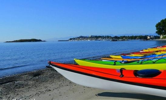 Rent A Kayak In Victoria's Upper Harbour
