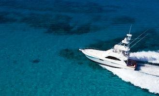 54' Sportfishing Fishing Charter in Cabo San Lucas