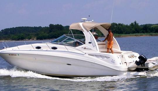 Charter 32' Sea Ray Sundancer 320 Ft Motor Yacht In Miami, Florida