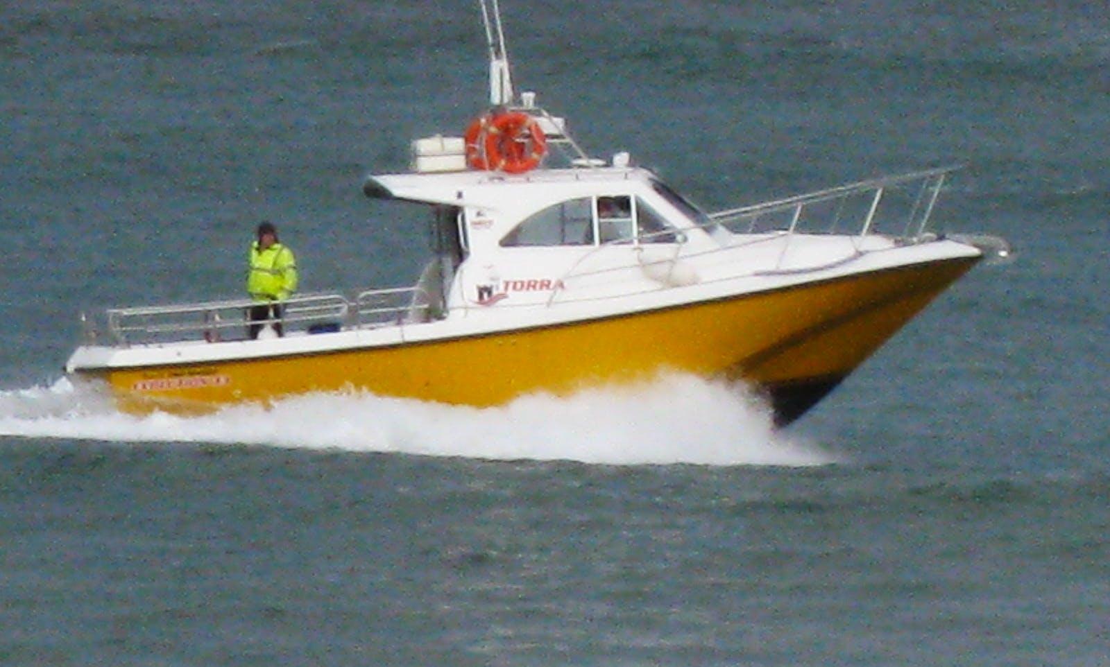 Sport Fisherman Rental in Ballycastle