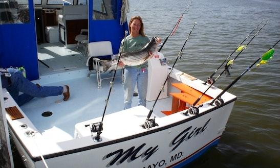 My Girl Sport Fisherman Charter In Edgewater