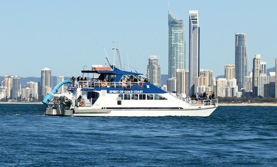 Captained Whale Watching Tours On 79' Power Catamaran Super Cat In Main Beach, Australia