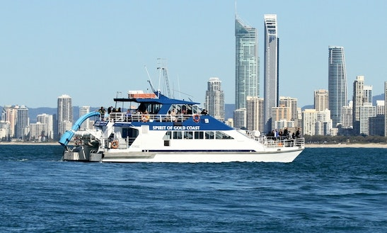 Captained Whale Watching Tours On 79' Power Catamaran Super Cat In Main Beach, Australia