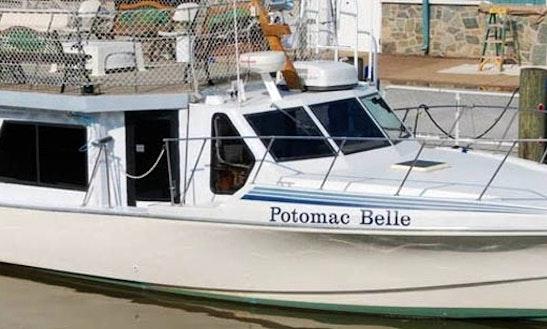 Potomac Belle Yacht Charters In Alexandria, Va