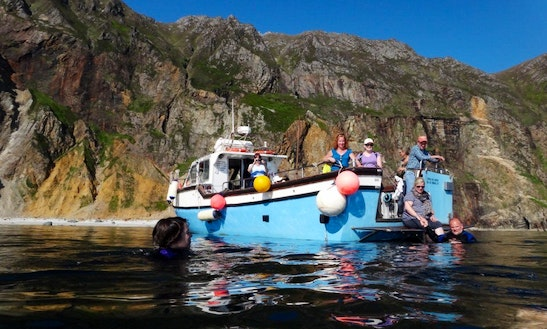 Sightseeing Tours & Charters In Teelin Harbour