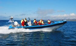 Book the 36' RIB Speedboats for 12 People in Húsavík, Iceland