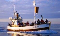 "Charter a 45 person ""Faldur"" Trawler Boat in Northeast, Iceland"