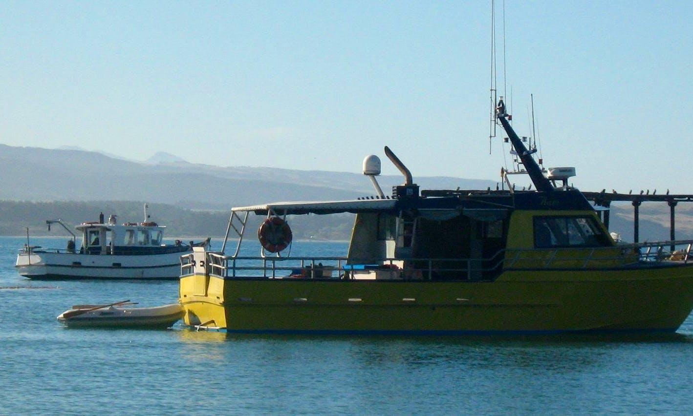 Fishing Charter in Moeraki
