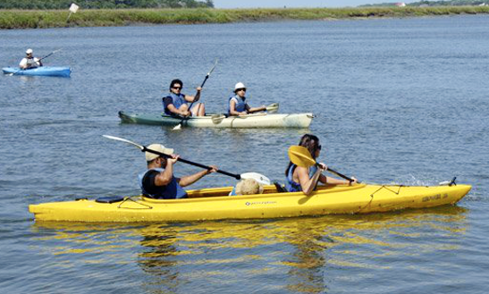Guided Kayak Tour In Edisto Island
