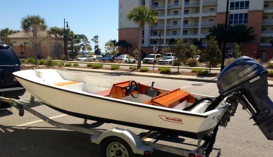 14' Starcraft Bass Boat Rental In Curtis