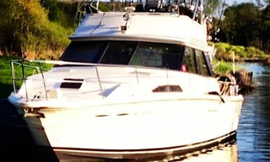 Charger 40ft Sea Ray Sportfish In Grand Haven