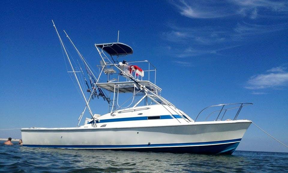 Sport Fisherman, Charter in Ocean Springs Mississippi
