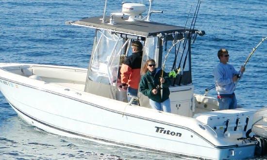 "Charter on 24ft ""Lil Devil"" Triton Boat in Narragansett, Rhode Island"