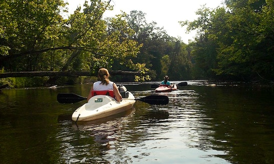 Kayak Rental In Mt Pleasant