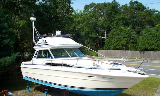 30' Sport Fisherman Rental In Marblehead, Oh