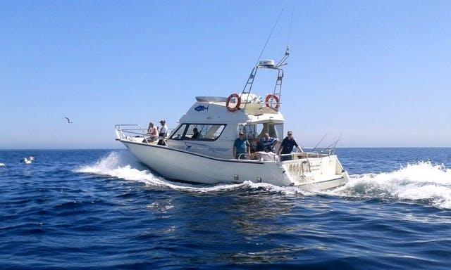 Passenger Boat Rental in Kinsale