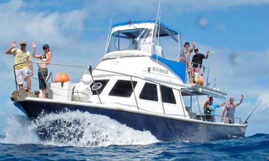 Group & Private Fishing Charters In Cairns