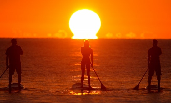 Hobie Stand-up Paddleboard Rental In Niantic