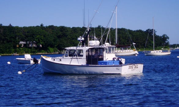 35ft Sportfisherman Boat Charter Fishing in Tisbury, Massachusetts