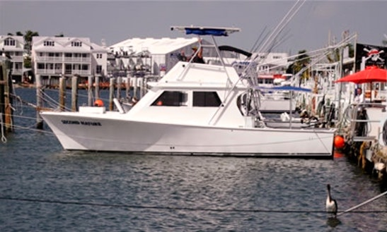 37' Sport Fisherman Rental In Key West, Florida