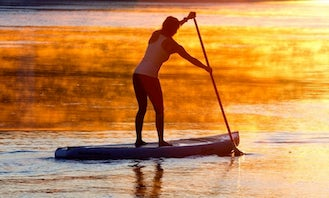 Stand Up Paddleboard Rentals in Sydenham, Ontario