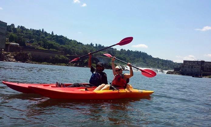 Kayaks, Canoes, Paddle boards