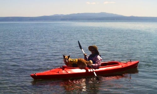 Kayak Rental in Brinnon