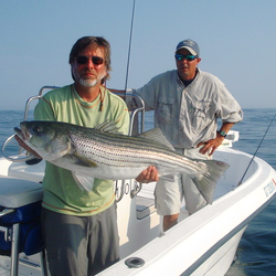 Southern connecticut fishing charters getmyboat for Ct fishing charters