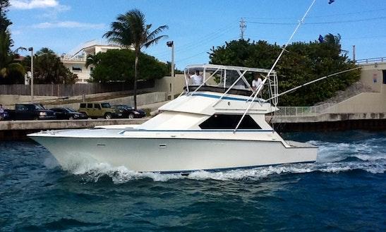 Motor Yacht Charter In Boynton Beach, Florida