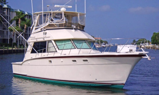 43' Sport Fisherman Charter In Boynton Beach, Florida