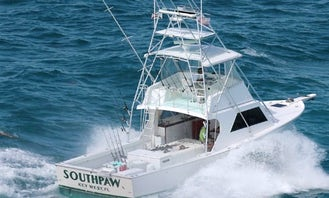 """Fishing Charter on 43ft """"Southpaw"""" Yacht in Key West, Florida"""