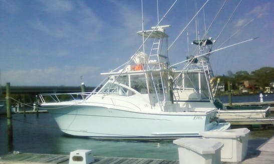 Charter On 37ft Sport Fishing Boat In Point Pleasant, New Jersey