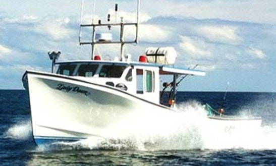 44' Four Ports Marine Tuna Fishing Charter In Souris