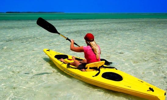 Kayak Rental In Clermont, Fl