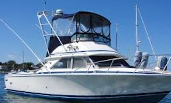 28' Sport Fisherman Charter In Harrison Township, Michigan