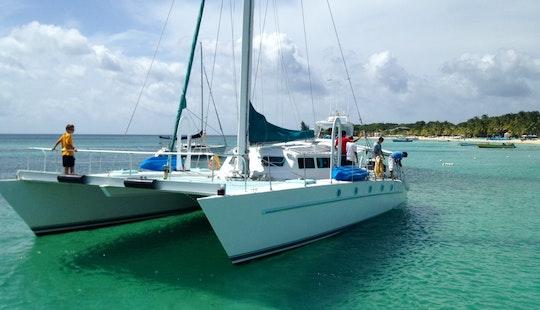 Sailing Catamaran Rental In West Bay