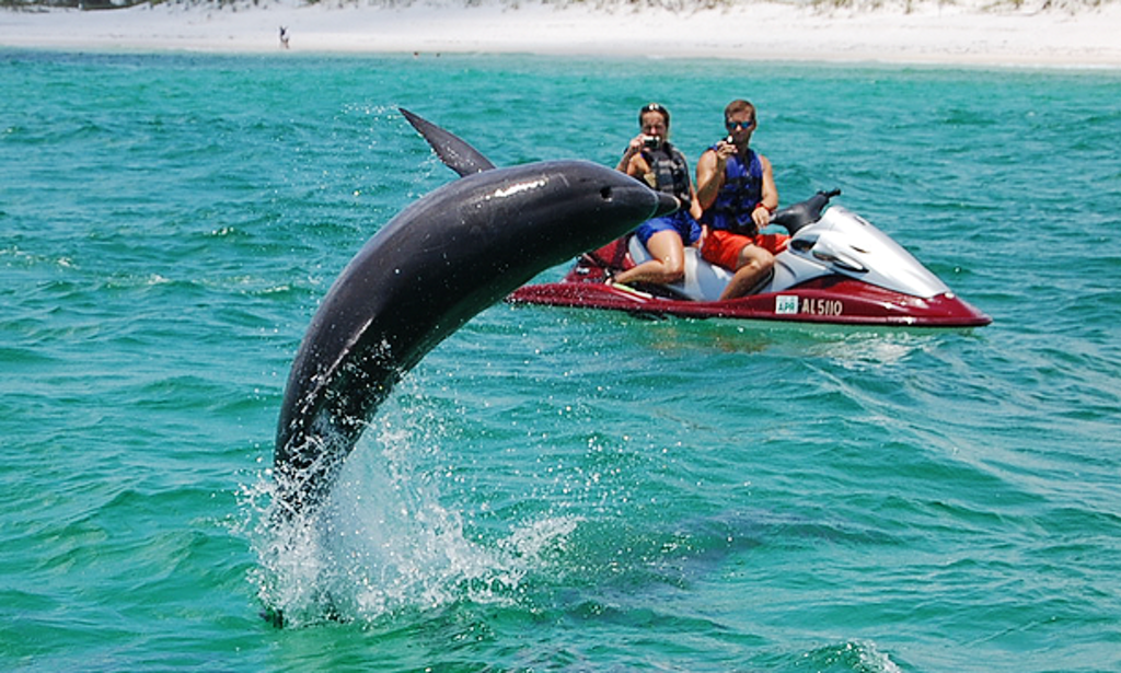Panama city beach yamaha vx jet ski rental getmyboat for Bay motors panama city florida